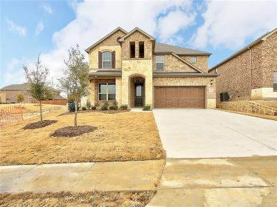 Allen Single Family Home For Sale: 1322 Bailey Lane