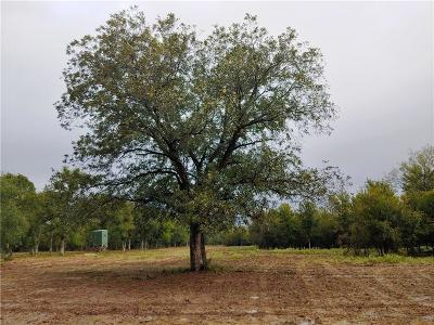 Palo Pinto County Farm & Ranch For Sale: Tbd Grantham Road