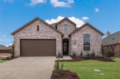 Collin County Single Family Home For Sale: 1732 Journey Forth Trail
