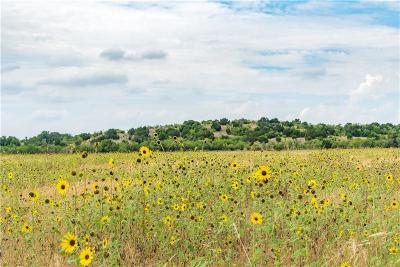 Comanche County Farm & Ranch For Sale: 1100b County Road 235