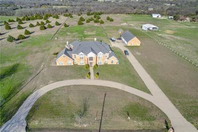 Waxahachie Single Family Home For Sale: 355 S Oak Branch Road