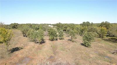 Parker County Residential Lots & Land For Sale: 006 Harmony Circle