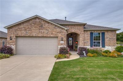 Frisco Single Family Home For Sale: 6963 Prospero Lane