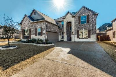 Frisco Single Family Home For Sale: 9993 Robinwoods Drive