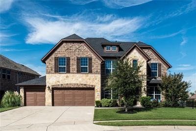 McKinney Single Family Home For Sale: 8300 Belew Drive