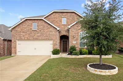 Little Elm Single Family Home For Sale: 2745 Costa Mesa Drive