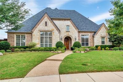 Allen Single Family Home For Sale: 1609 Eagle Pass Way