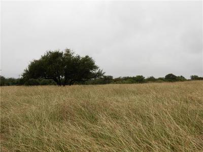 Granbury Farm & Ranch For Sale: Tbd Tin Top Highway