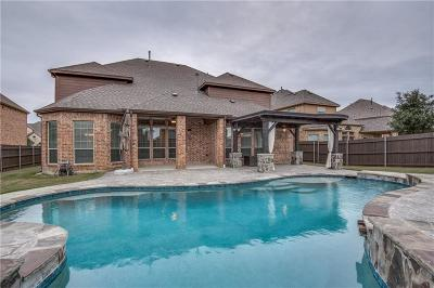 Prosper Single Family Home For Sale: 740 Salada Drive