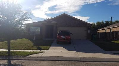 Rhome TX Single Family Home For Sale: $180,000