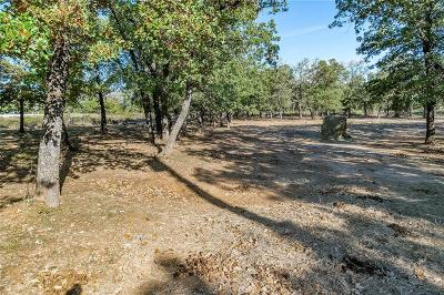 Springtown Residential Lots & Land For Sale: 620 Post Oak Lane