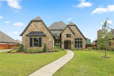 Arlington Single Family Home For Sale: 7305 Winding Way Drive