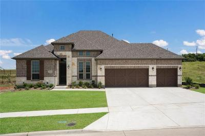 Frisco Single Family Home For Sale: 14616 Speargrass Drive