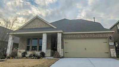 Little Elm Single Family Home For Sale: 3009 Brazos Drive
