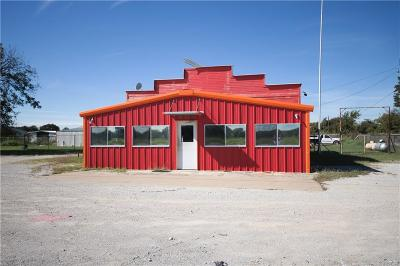 Palo Pinto County Commercial For Sale: 3400 S Highway 281