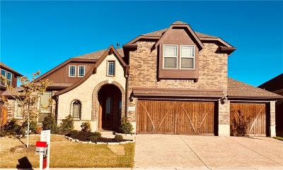 Fort Worth Single Family Home For Sale: 12516 Treyburn Drive