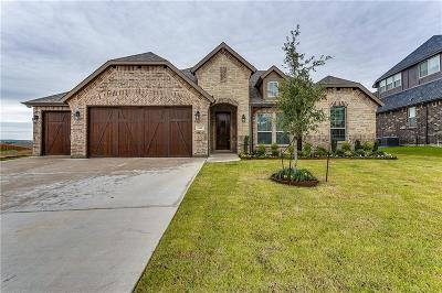 Burleson Single Family Home For Sale: 142 Fairweather