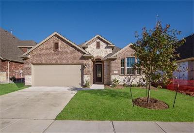 Little Elm Single Family Home For Sale: 2121 Lake Pine Drive