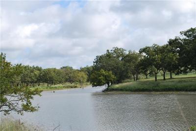 Goldthwaite Farm & Ranch Active Option Contract