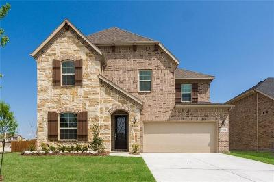 Rowlett Single Family Home For Sale: 2800 Merlot Circle