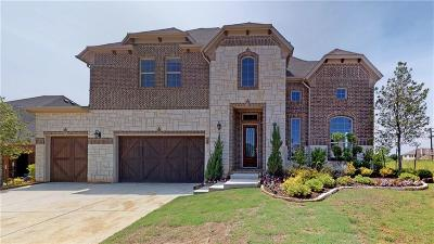 Single Family Home For Sale: 105 Shadow Creek Lane