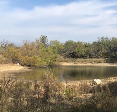 Ranger Farm & Ranch For Sale: 13872 Fm 207