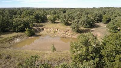 Weatherford Farm & Ranch For Sale: 0000 Central Road