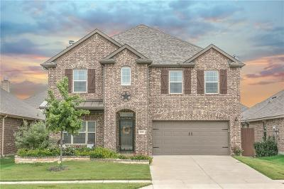 Frisco Single Family Home For Sale: 11305 Amistad Drive