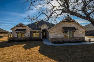 Granbury Single Family Home For Sale: 1725 Rockview Drive