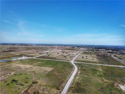 Weatherford Residential Lots & Land For Sale: 3001 Perkins Lane