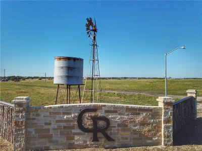 Parker County Residential Lots & Land For Sale: 2011 Perkins Lane