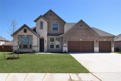 Little Elm Single Family Home For Sale: 1601 Serra Drive