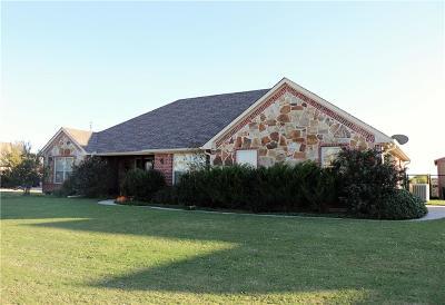 Nevada Single Family Home For Sale: 317 Brooks Drive
