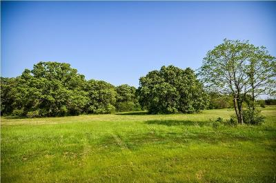 Residential Lots & Land For Sale: L 272 Palomino Court
