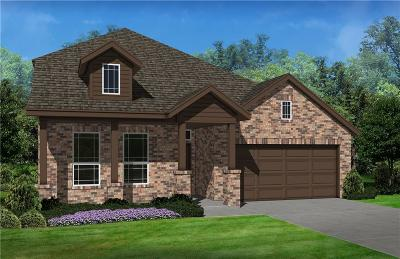 Single Family Home For Sale: 1817 Turnstone Trail