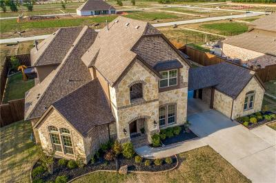 Prosper Single Family Home For Sale: 641 Sunbury Lane