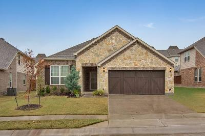 Lewisville Single Family Home For Sale: 2701 Calypso Lane