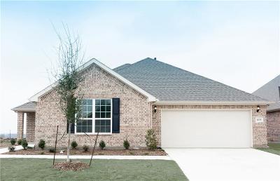 Denton County Single Family Home For Sale: 1409 Millican Lane