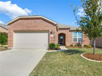 Frisco Single Family Home For Sale: 2956 Rising Tide Drive