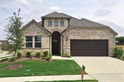 Carrollton Single Family Home For Sale: 4832 Timber Trail