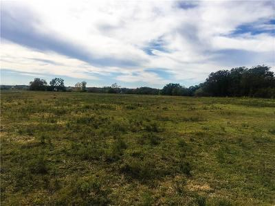 Dublin Farm & Ranch For Sale: Tbd Cr 380