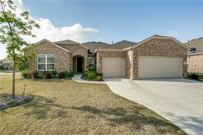 Frisco Single Family Home Active Option Contract: 2507 Luna Vista Lane