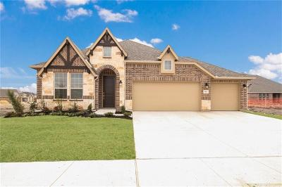 Prosper Single Family Home For Sale: 3041 Clearwater Drive
