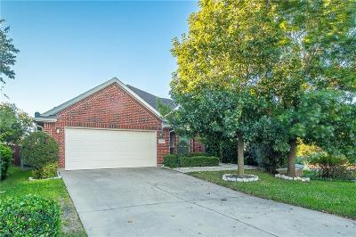 Grand Prairie Single Family Home For Sale: 3175 S Camino Lagos S