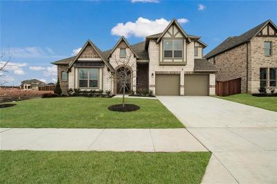 Prosper Single Family Home For Sale: 801 Orchard Drive