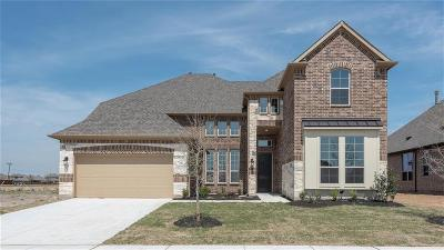 Prosper Single Family Home For Sale: 3120 Westminster Drive