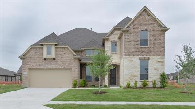 Prosper Single Family Home For Sale: 3100 Renmuir Drive