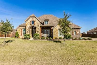 Fort Worth Single Family Home For Sale: 1224 Twisting Meadows Drive