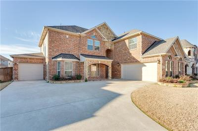 Grand Prairie Single Family Home For Sale: 2823 Arenoso