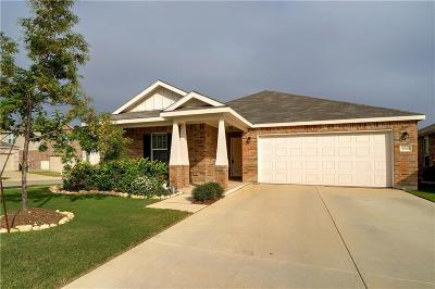 Single Family Home For Sale: 10040 Pyrite Drive